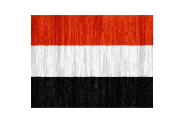 دولة اليمن
